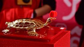 傳藝黃金龜 宜蘭傳藝園區提供 春節