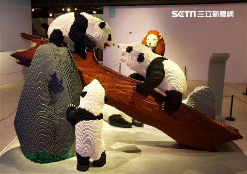 寬宏藝術,過年,展覽,網美,顛倒屋,負能量,白爛貓