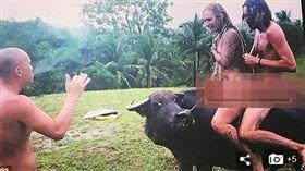 一群英國人大膽裸騎水牛,觸犯菲律賓當地法律。(圖/翻攝Daily Mail)