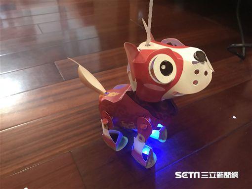 台北燈節「幸福GoGo」狗年小提燈。(圖/記者簡佑庭攝)