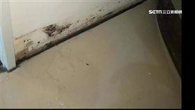 合宜宅又出包! 住戶控房子漏水.壁癌問題多