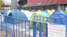 廣島球迷排預售票,排上百個帳篷(圖/翻攝自推特)