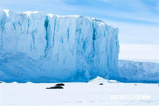 紐西蘭航空最新南極遨遊飛翔平安宣導短片。(圖/紐西蘭航空供應)