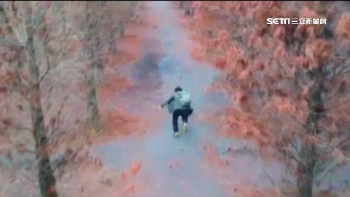 他空拍落羽松美景 也拍到自己跌倒瞬間