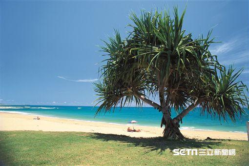 澳洲昆士蘭秘境沙岸,海灘,日光浴(圖/澳洲昆士蘭州旅遊暨舉動推廣局供應)
