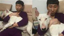 狗狗主人有父子臉。(翻攝自抖音)