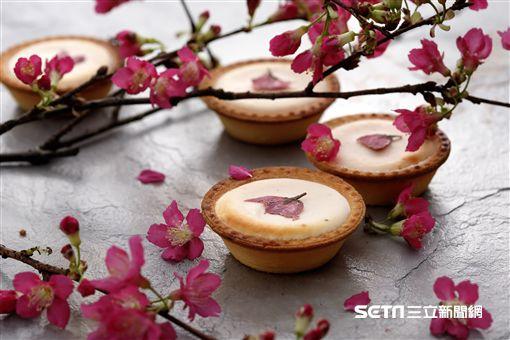 櫻花甜點,櫻花金時起士塔。(圖/安普蕾修供給)