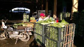 高市果菜市場休市  農會擴大通路續收