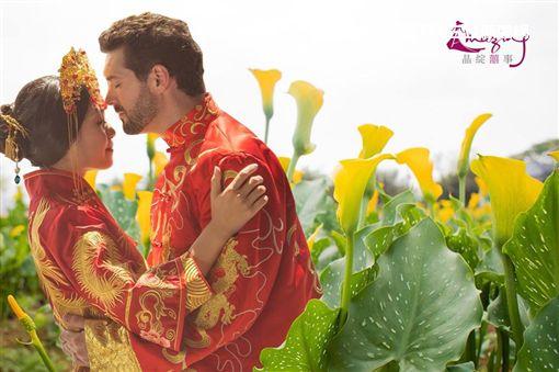桃園彩色海芋季,彩芋季,海芋,糕餅,戀人,婚紗,鄭文燦