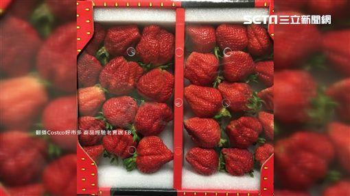 好市多水果好雷?奇異果發霉草莓蟲鑽