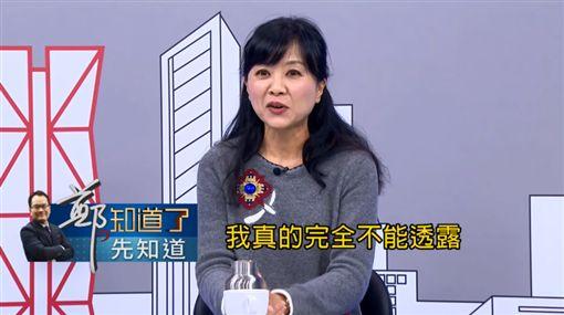 台北市長,選舉,柯文哲,民進黨,禮讓,重量級人物,參選 圖/翻攝自YouTube