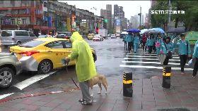 國小傘戒嚴1000