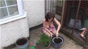 凱蒂,種花,盆栽,巨乳,胸部 圖/翻攝自YouTube