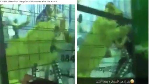 沙烏地阿拉伯吉達有一群孩子和獅子共處一室玩捉迷藏,不意一位女童慘遭獅子撲倒、咬傷,旁邊民眾見狀後,立刻上前將女童與獅子隔開,目前尚未清晰女童傷勢與狀態。(圖/翻攝自太陽報)