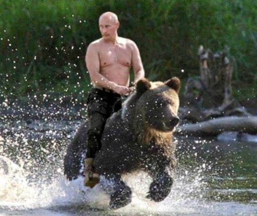普丁騎熊_推特https://twitter.com/X_USAF_E7/status/815029512652148736/photo/1?ref_src=twsrc%5Etfw&ref_url=https%3A%2F%2Fsputniknews.com%2Frussia%2F201803101062388224-putin-reveals-pictures-riding-bear-kgb%2