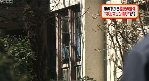 日本,嬰兒,屍體,荒廢,民宅,整修,福馬林,地板,嬰屍,白蟻(圖/翻攝自NNN)http://toyokeizai.net/articles/-/212175