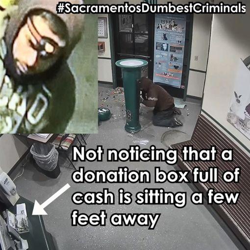 笨賊偷口香糖機(圖/翻攝自Front Street Animal Shelter - City of Sacramento臉書)
