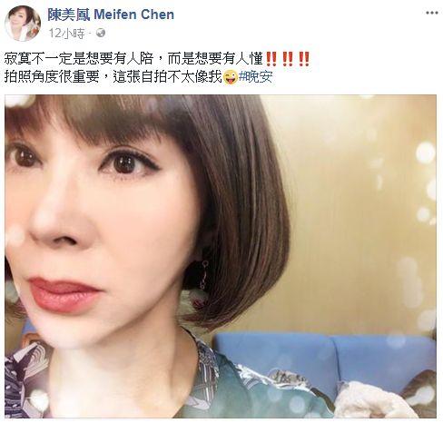 陳美鳳/翻攝自臉書
