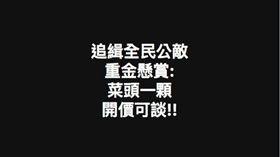 高雄,斬首,老翁,蔡英文,總統,菜頭,臉書,社維法
