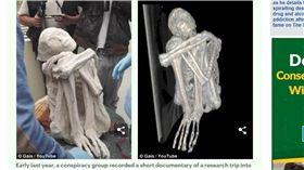 俄羅斯科學家柯洛柯夫(Konstantin Korotkov)認為秘魯古城附近發現的木乃伊就是外星人(圖/翻攝自每日郵報)