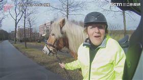 騎士成功追回失控的馬