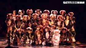 《貓》昨天起在台大體育館一連4天6場演出。(圖/寬宏提供)