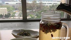 台北市立聯合醫院林森中醫昆明院區藥劑科藥師吳儀蓁說,除枸杞菊花茶,另外也可食用桑杞茶,桑葉有洗肝明目的作用。(圖/台北市聯合醫院提供)