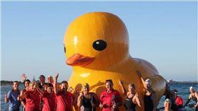 澳洲,吉祥物,游泳俱樂部,鴨子,懸賞,柏斯 圖/翻攝自臉書