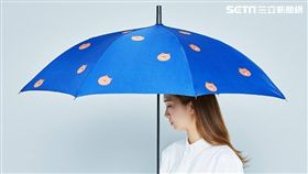 天氣,雨勢,氣象局,大雨特報,鋒面,LINE FRIENDS,熊大