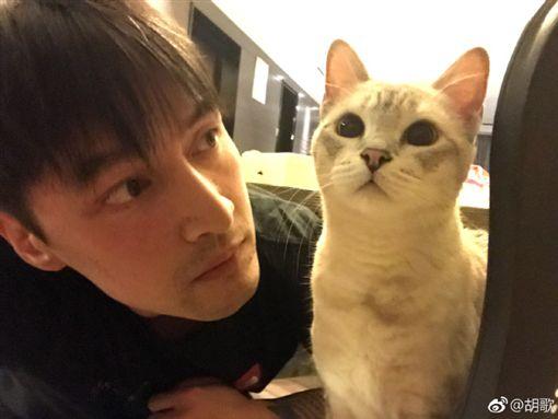 胡歌/翻攝自微博
