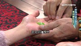 (側)樹葉指紋算1800