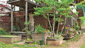 名家專用/幸福空間/我家就是大自然!3招打造專屬有機花園!(勿用)