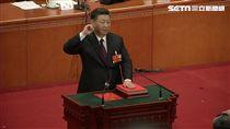 習近平連任國家主席 北京罕降3月雪-習近平-