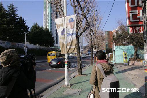▲NC恐龍台灣左投王維中布條掛在昌原街頭。(圖/記者蕭保祥攝)