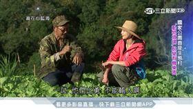 台灣亮起來/動物吃剩才能賣!西寶聚落捨農藥轉有機