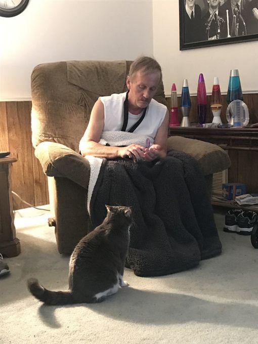 貓咪狂叫救了休克爸爸。(圖/翻攝自The Dodo)