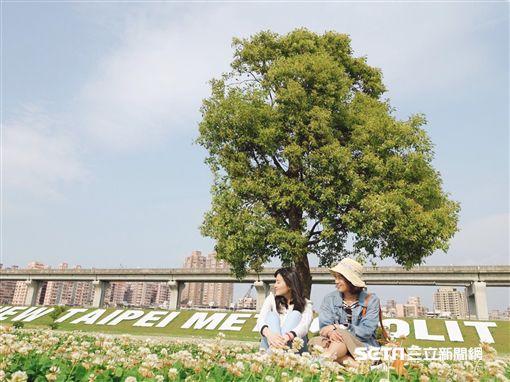 大台北都會公園。(圖/新北觀光局提供)