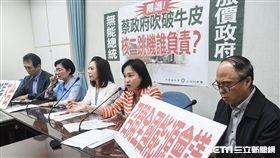 國民黨立委召開「蔡政府吹破你皮,核二跳機誰負責」記者會。 圖/記者林敬旻攝