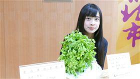 新北市衛生局今(30)天公布抽驗清明節應景食品,2件香菜農藥殘留超標。(圖/新北市衛生局提供)