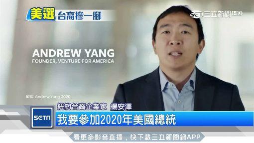 台裔移民選美國總統! 楊安澤:兩岸維持現狀
