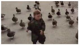 鴨子,綠頭鴨,ㄚ咪仔,迷彩服,迷彩,軍隊,戰爭,UNILAD 圖/翻攝自臉書 https://goo.gl/WzvXST