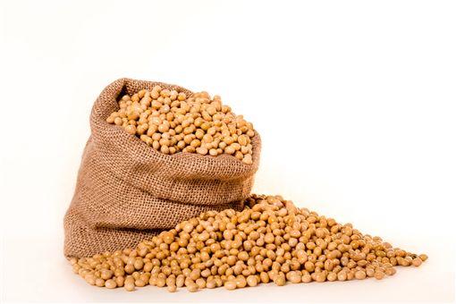 大豆,黃豆,圖/翻攝自Pixabay
