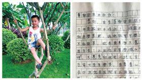 河南省姊姊求醫師換臉給弟弟_大河報 http://newpaper.dahe.cn/dhb/html/2018-04/04/content_235703.htm
