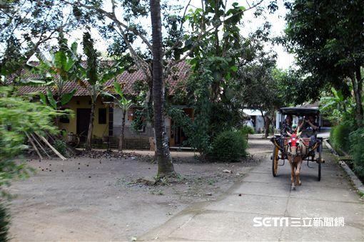 印尼日惹,鄉村之旅,馬車。(圖/記者簡佑庭攝)