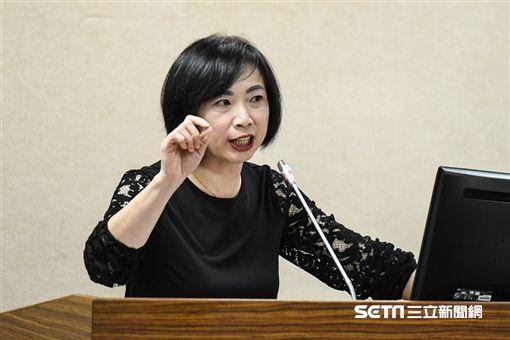 民進黨立法委員何欣純。 圖/記者林敬旻攝