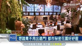 南韓夯「放鬆商機」!花香咖啡廳隔絕喧囂 營造都市叢林(圖/翻攝自ARIRANG ISSUE)