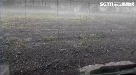 南投魚池鄉、日月潭下午下冰雹(圖/翻攝畫面)