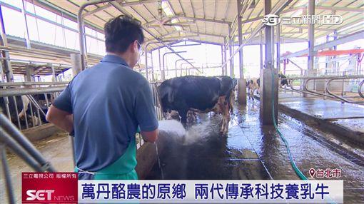 台灣每十瓶牛奶 有一瓶來自萬丹業配屏東,萬丹,牛乳,紅豆,酪農,牛奶