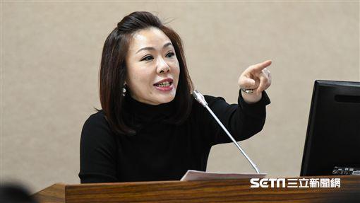 國民黨立委李彥秀。 圖/記者林敬旻攝