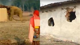 大象,印度,Chhattisgarh,住家,摧毀,家園,住戶,攻擊,衝突,動物 圖/翻攝自YouTube https://goo.gl/qAe7MF